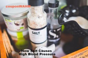 How Salt Causes High Blood Pressure