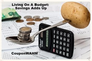 Living On A Budget: Savings Adds Up