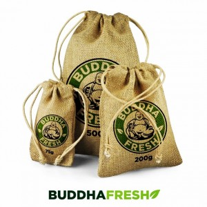 Buddha Fresh: Eco Friendly Air Freshener