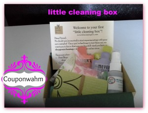 little cleaning box