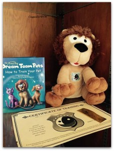The Amazing Dream Team Pets  Takes The Fear Out Of Bedtime @usfg @dreamteampets