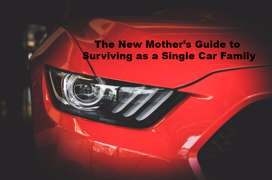 The New Mother's Guide to Surviving as a Single Car Family