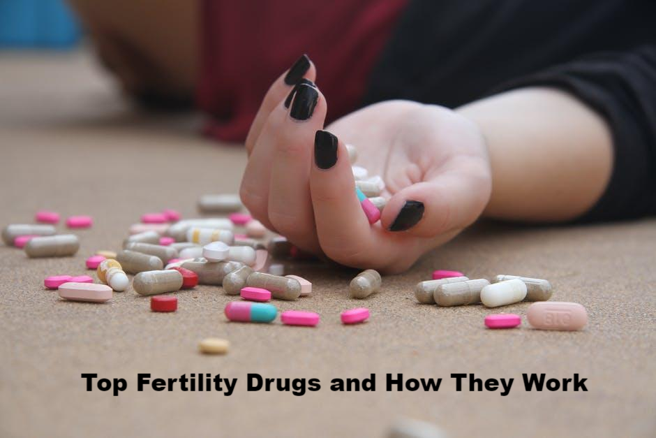 Top Fertility Drugs and How They Work