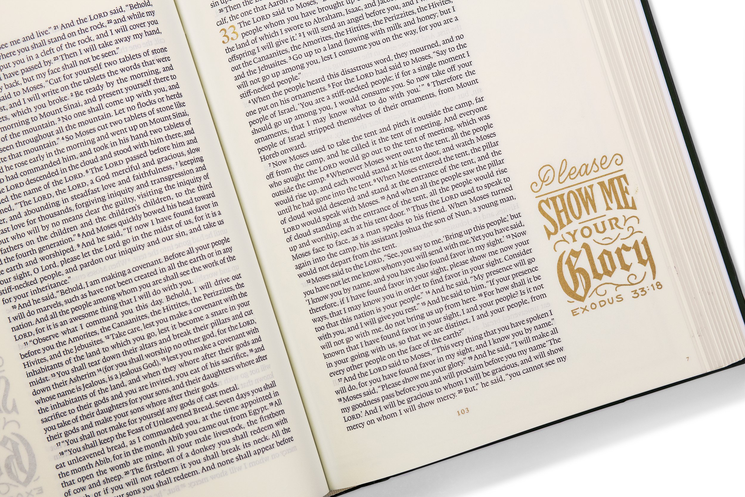 The #ESVIlluminatedBible combines art and journaling  #FlyBy #holidayguide