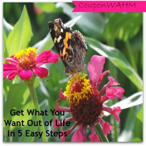 Get What You Want Out of Life in 5 Easy Steps