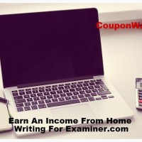 work from home examiner